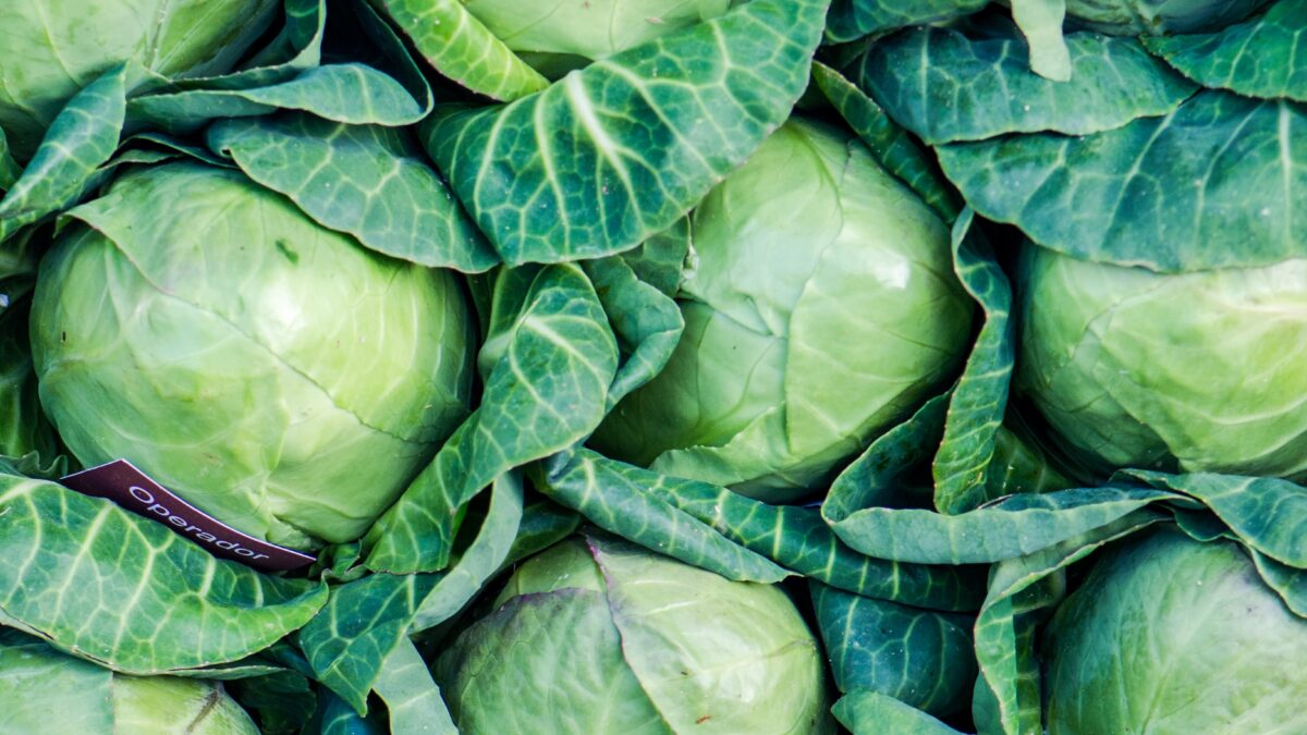 Φυσική Διατροφή τον Νοέμβριο: Λάχανα και λαχανάκια