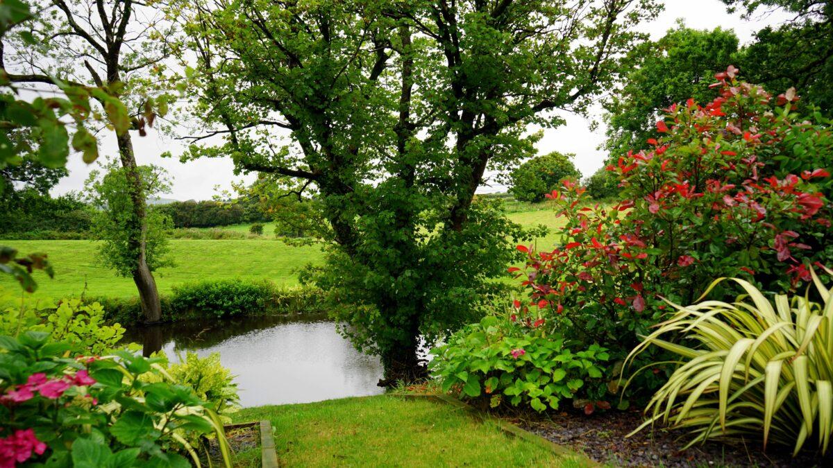 Οικολογική Κηπουρική με Φυσικούς Παράγοντες