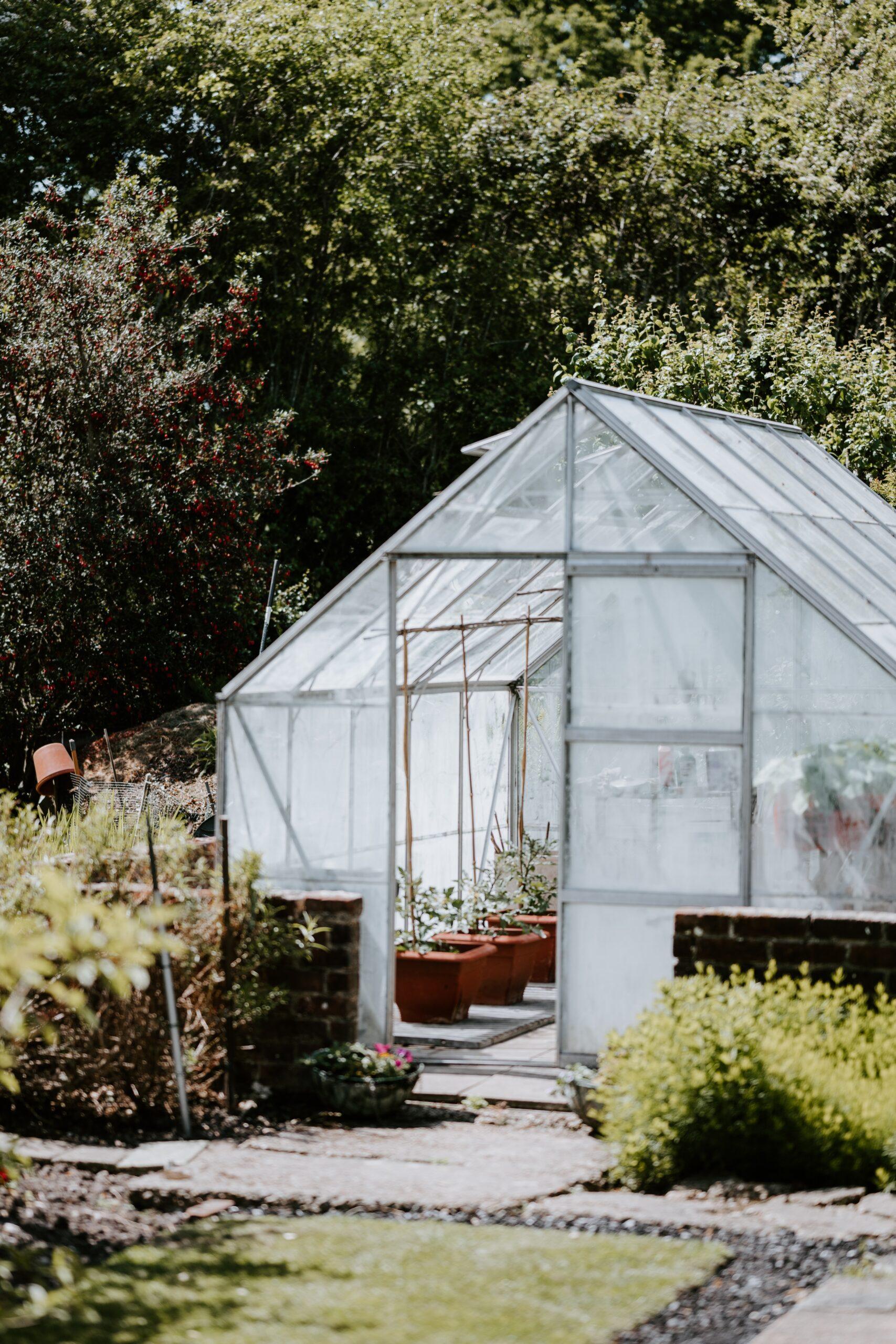 Καλλωπιστικά φυτά και κηπευτικά στο δικό σας θερμοκήπιο