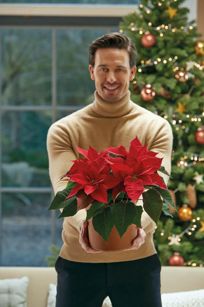 Στις 12 Δεκεμβρίου ένα αλεξανδρινό είναι η καλύτερη προσφορά.