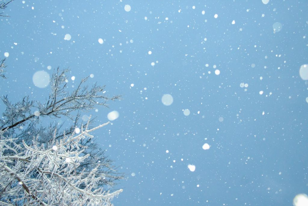 Αν χιονίσει όλα μοιάζουν υπέροχα στη φύση. ακόμα και στον κήπο ή τη βεράντα.