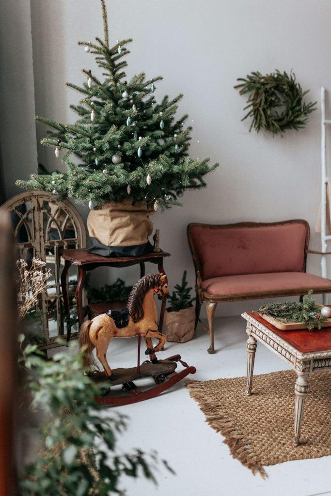 Τον Ιανουάριο, αμέσως μετά τις Γιορτές, το ζωντανό έλατο που στολίσατε στο σπίτι, πρέπει να μεταφερθεί στο εξωτερικό περιβάλλον.