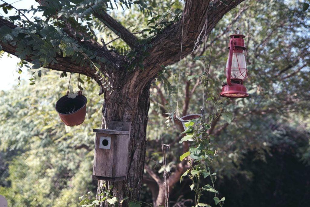 Φυσικό και τεχνητό καταφύγιο, δοχεία με τροφή και χαλαρό προφυλαγμένο σκηνικό: ένας μικρός βιότοπος πρόθυμος να προσφέρει στα πουλιά αυτό που ζητούν από το περιβάλλον.