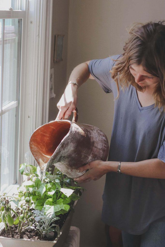 Τον Φεβρουάριο, μην ξεχνάτε το πότισμα των φυτών μέσα στο σπίτι.