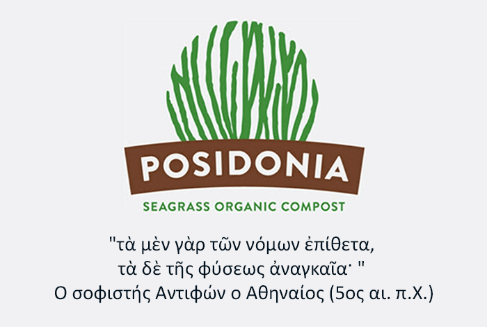 posidonia greenside1 1
