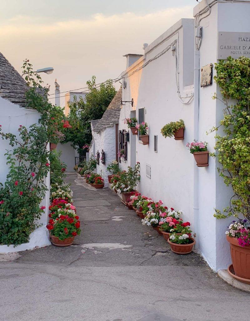 Ολάνθιστος δρόμος με γεράνια σε χωριό της Ιταλίας.