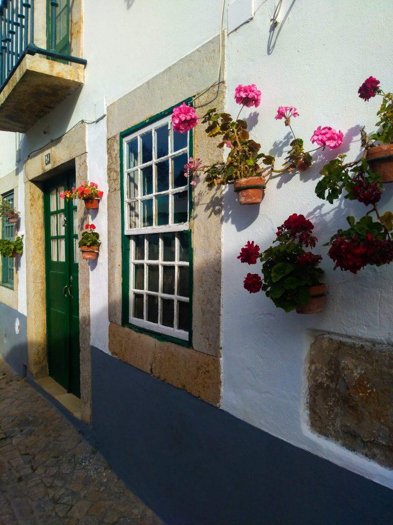 Σε ένα χωριό της Πορτογαλίας, τα γεράνια γίνονται πολύχρωμα στολίδια στους λευκούς τοίχους.