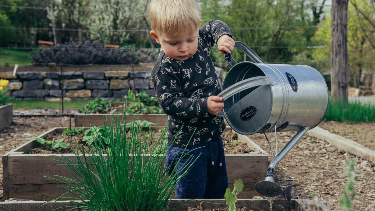 Παιδιά σε δράση στον κήπο και στη βεράντα