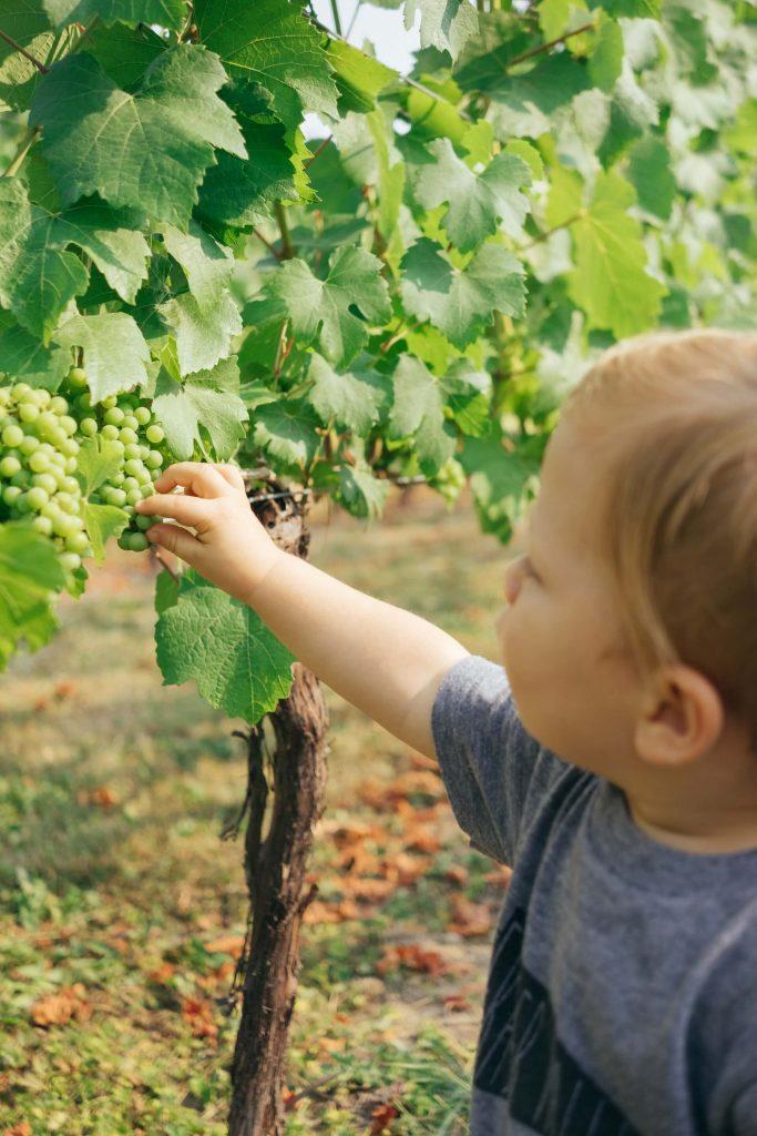 Παρακινήστε, ακόμα και τα πολύ μικρά παιδιά, να δουν, να αγγίξουν, να ευαισθητοποιηθούν, να μάθουν...