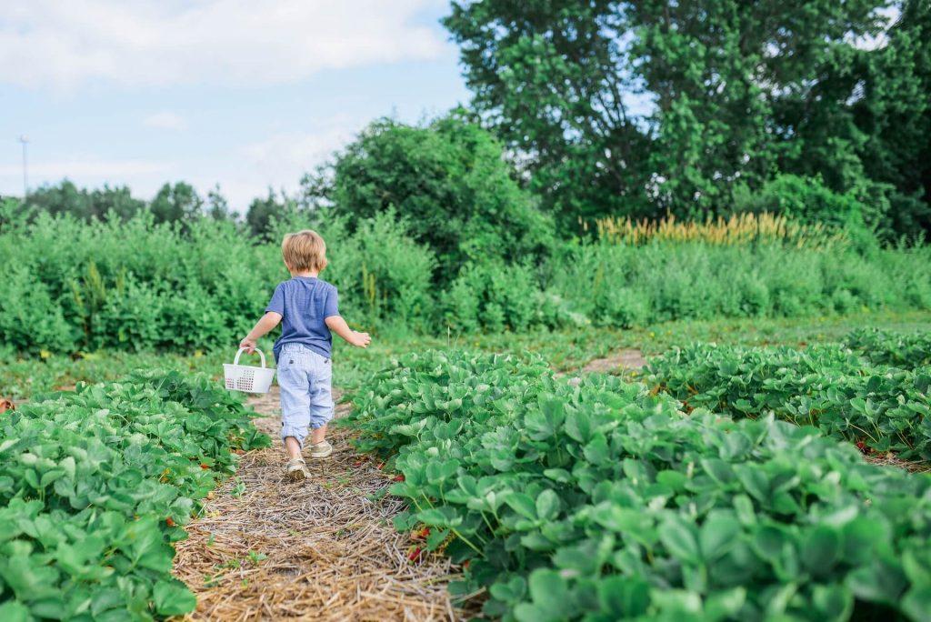 Αφήστε το παιδί σας να νοιώσει υπεύθυνο. Εμπιστευθείτε του μια εργασία και περιμένετε με υπομονή το αποτέλεσμα, πάντα κάτω από τη διακριτική και διαρκή επιτήρησή σας.
