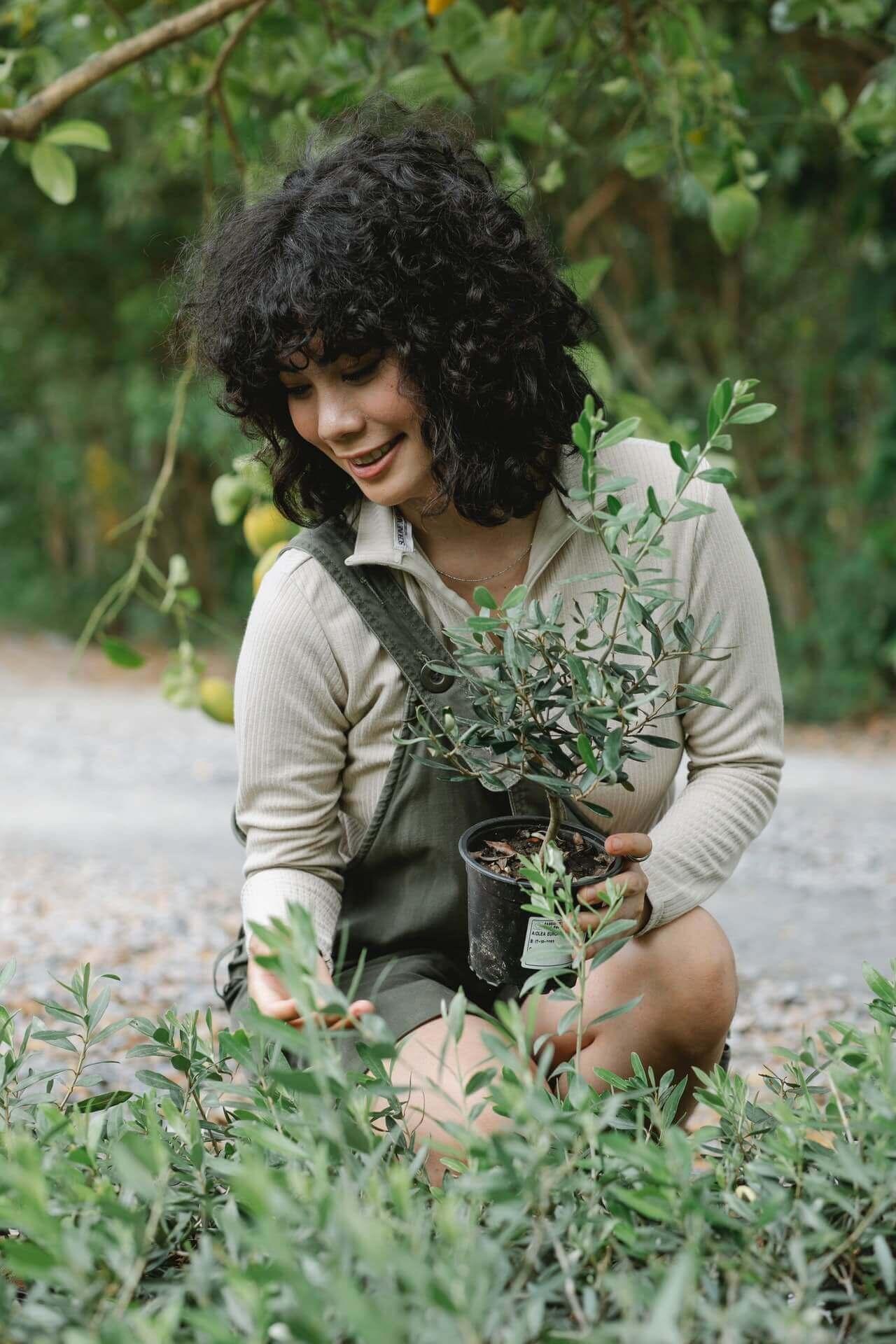 Επιλέξτε με προσοχή τα νέα σας δέντρα και τους καινούργιους σας θάμνους.