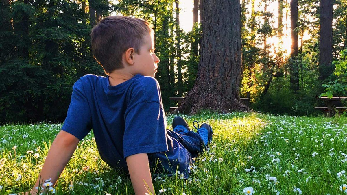 Δάσος: Ανάσα ζωής!