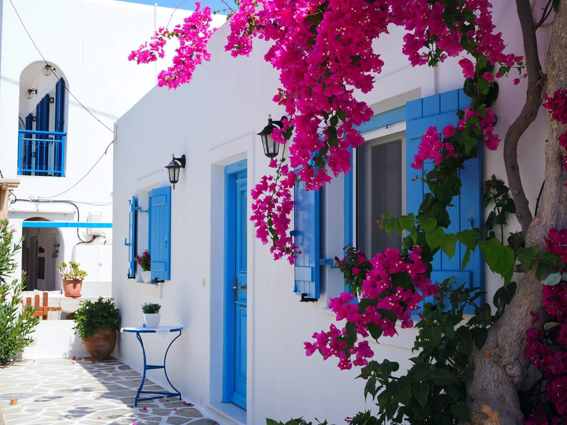 Μια ανθισμένη μπουκαμβίλλια φτιάχνει τις ωραιότερες εικόνες και πρωταγωνιστεί στα πιο όμορφα ελληνικά καλοκαίρια.